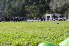 Galeriacampo05